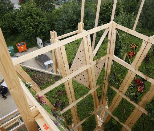 Une étrange maison en bois a vu le jour à l'EPFL