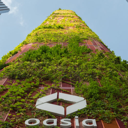 25 projets durables ouvrant la voie à la conception écologique