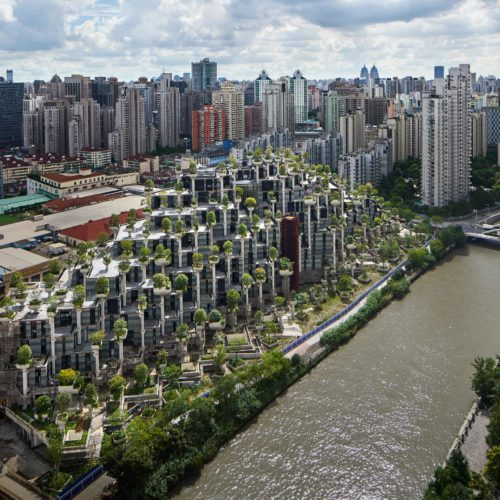 1000 Trees in Shanghai