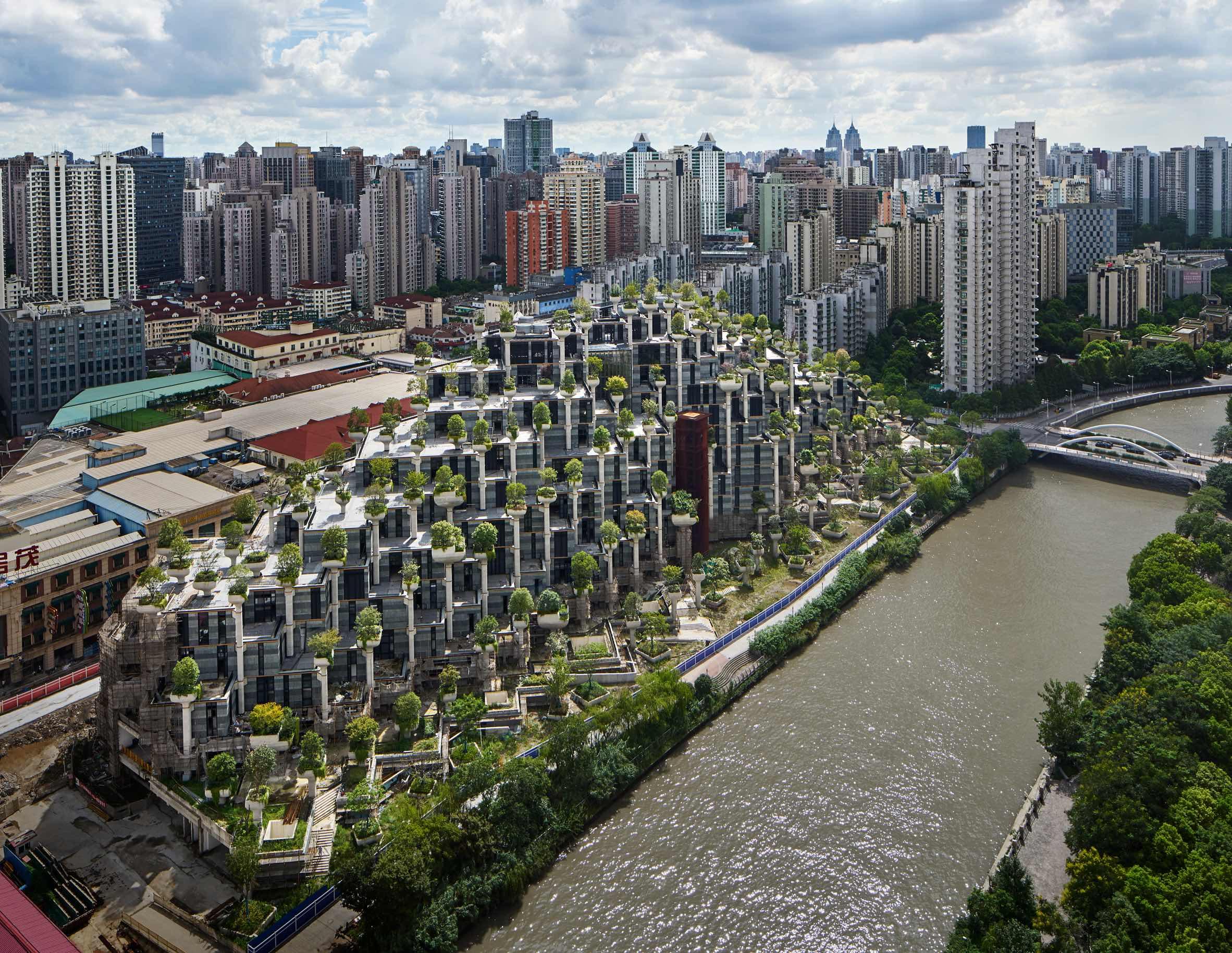 1000 Trees in Shanghai